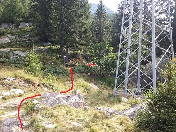 Bill - Imbocco sentiero Meccia 2
