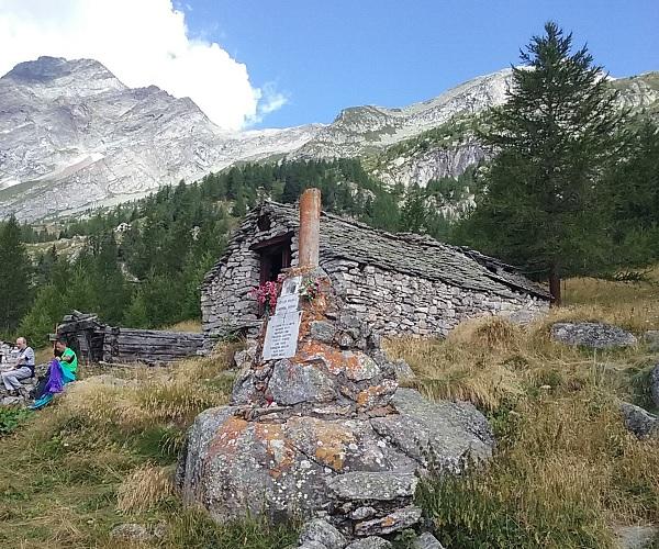 Meccia-8_Alpe